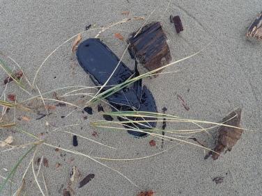 Black flip flop up on the backshore