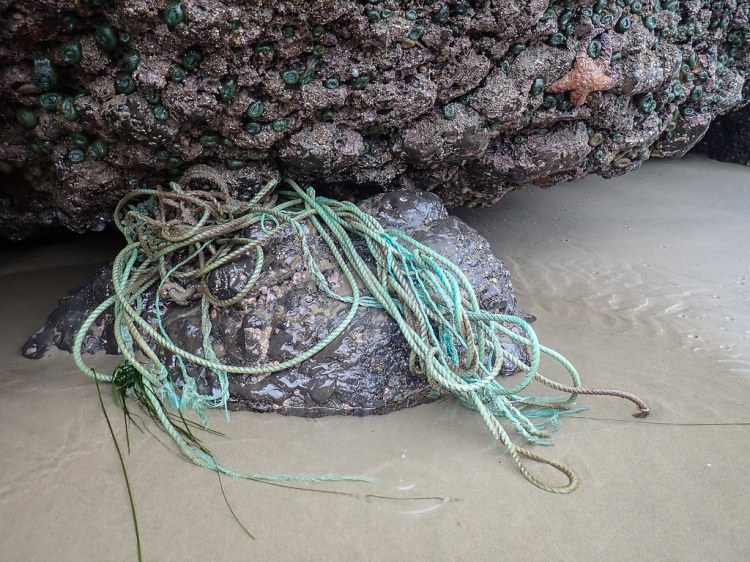 Lost line, aqua-colored, wedged in the rocks