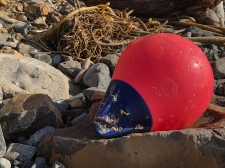 Red buoy with blue rope-hold