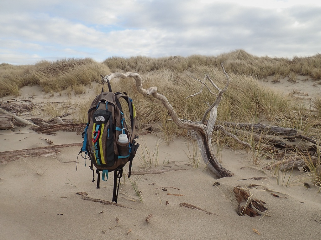 My The North Face pack hanging off an upturned root, foredune being