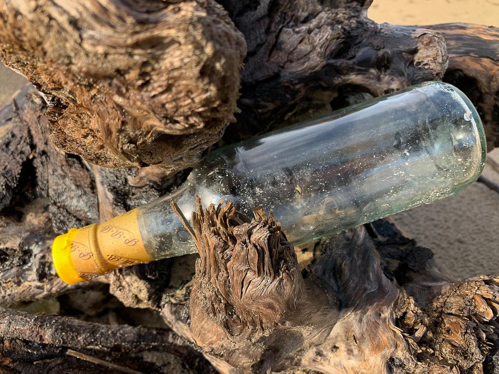 Drifted empty bottle of sesame oil