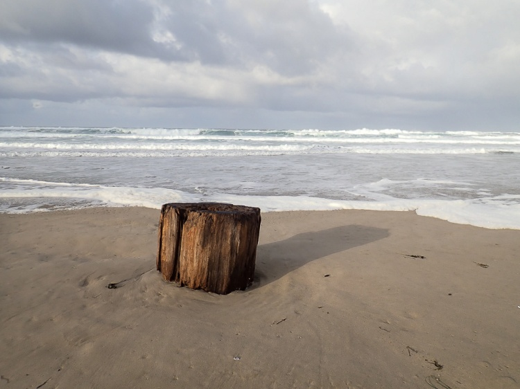 A stump, in the swash, probably meant to be split for firewood
