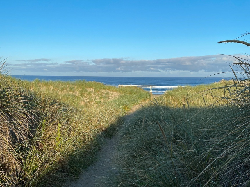 Trail down to the beach, thru the beachgrass on a sunny morning. Narrow bank of offshore clouds, dissipating.