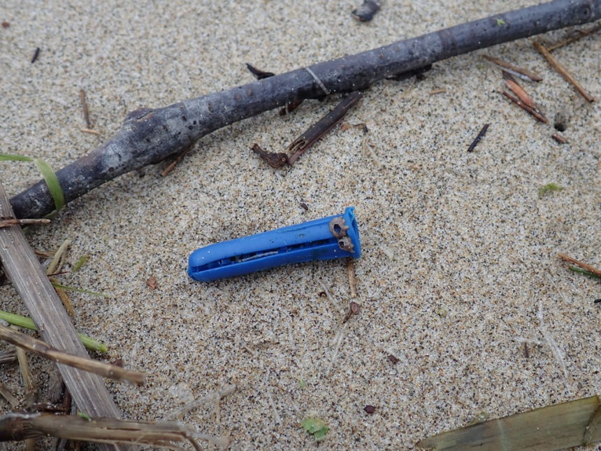 Blue plastic wall anchor with a couple barnacle hitchhikers