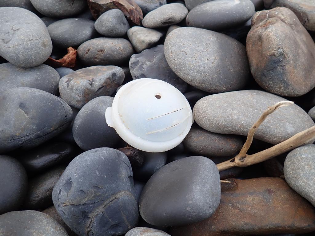 Lid to a white plastic bait jar