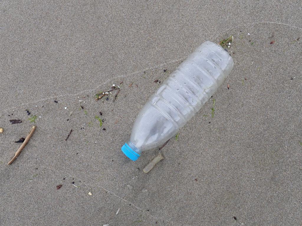 Empty plastic bottle in the tide line