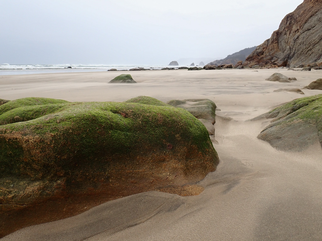 Looking north at sea stacks in the far distance; surf zone on the left, cliffs on the right; beach with blowing sand ahead; green seaweed-covered rocks in the foreground